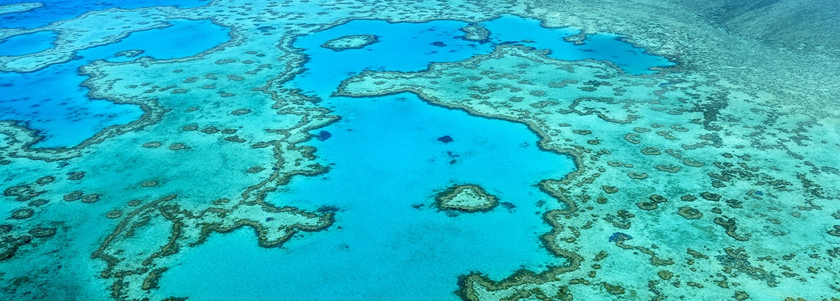 The beauty of the Great Barrier Reef, Australia