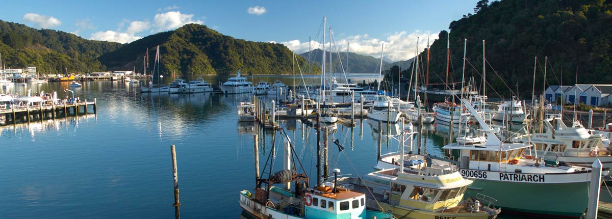 Harbour of Picton, New Zealand