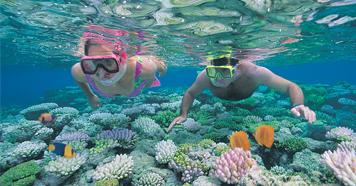 Best Cruise Destinations Fiji New Caledonia Tasmania