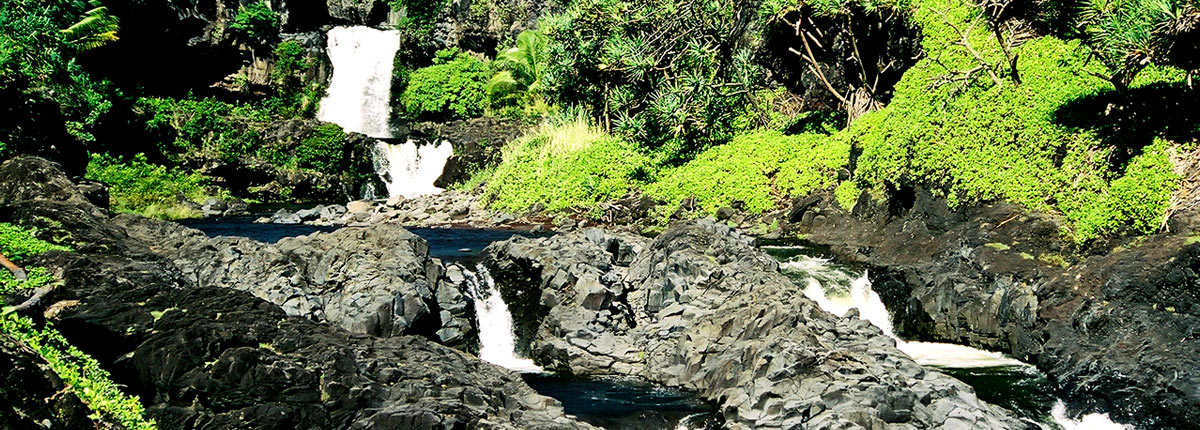 beautiful waterfall tucked away in a maui rainforest